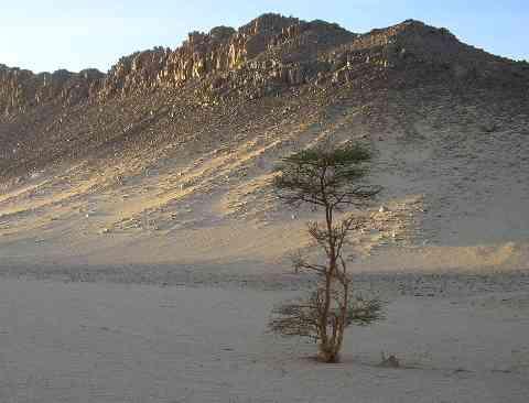 Le maroc met en place des aires protégées pour préserver sa diversité biologique